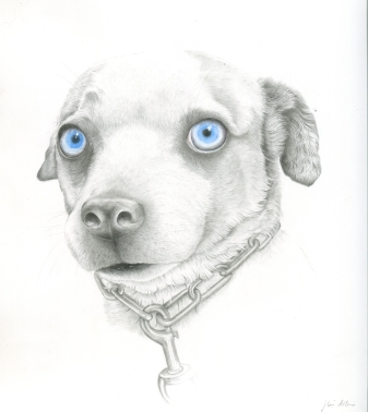 "SOLD. ""Fergie,"" graphite and watercolor on Yupo, 9.5"" x 8 3/4"" unframed, 14"" x 12 3/4"" framed, $270."
