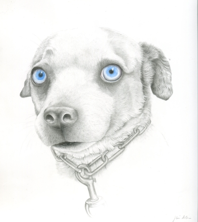 """Fergie,"" graphite and watercolor on Yupo, 9.5"" x 8 3/4"" unframed, 14"" x 12 3/4"" framed, $270."