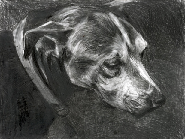 """SOLD! """"Rusty, giclee print, 9.5"""" x 12"""" framed, $75."""
